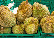 Durian tropical  fruit in thai local market Royalty Free Stock Photo