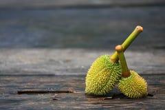 Durian van Thailand Royalty-vrije Stock Fotografie