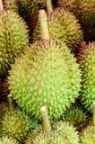 Durian is vers, koning van fruit van Thailand, royalty-vrije stock foto's