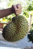Durian w ręki mieniu obraz stock