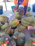 Durian. Waiting to buy durain. Its very delicious Royalty Free Stock Photo