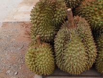 Durian, which is put together in many numbers for sale royalty free stock photography