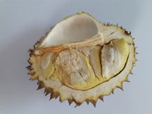 Durian. On whit background Stock Photography