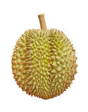 Durian. On a white background Royalty Free Stock Image