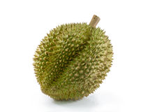 Durian on white background. Durian fruit on white background Royalty Free Stock Images
