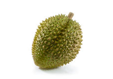 Durian on white background. Durian fruit on white background stock photography