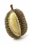 Durian on white background. Fruit from thailand Stock Image