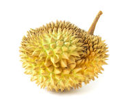 Durian on white background, topical fruit.  Stock Images