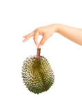 Durian in woman hand holding isolated Stock Photo