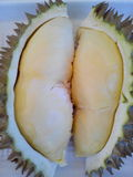 The durian. Yellow delicious fruit aromatic Stock Photo