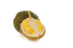 Durian with yellowish flesh on white background. Royalty Free Stock Images