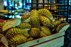 Durian zieht Kiste ab Stockfoto
