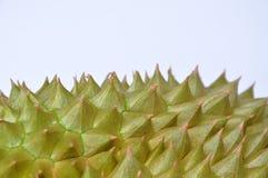 Duriandornenbeschaffenheit und -hintergrund Lizenzfreie Stockfotografie