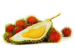 durianen bär fruktt tropiska rambutans Royaltyfri Foto