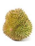 Durianfrüchte auf weißem Hintergrund lizenzfreie stockbilder