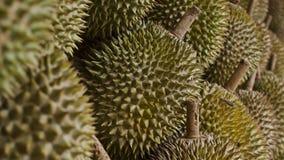Durianfrucht draußen Stockfotografie