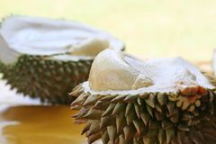 durianfrukt arkivfoton