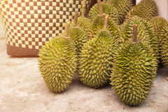 Durianfrukt efter skördfruktträdgård i Thailand Royaltyfria Bilder