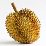 Durianfrukt från Thailand. Royaltyfria Foton
