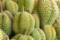 Durianfrukt i Thailand har en s?t smak royaltyfria bilder