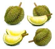 Durianfrukt som isoleras på en vit frukt för bakgrundsdurainkonung av Thailand royaltyfri bild