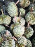Duriankoningin van vruchten Asia†‹Thailand†‹ stock foto's