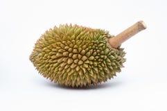 Duriankonung av frukt Arkivbilder
