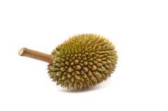 Duriankonung av frukt Royaltyfria Bilder