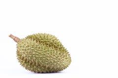 Durianmontag-Zapfen ist König von tropische Früchte Durian auf weißer Hintergrund dem gesunden Durian-Fruchtlebensmittel, das nah Lizenzfreie Stockfotografie