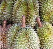 durians предпосылки Стоковая Фотография RF