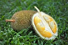Durians Stock Photo