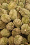 Durians 2 Stock Image
