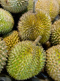 Durians Royalty Free Stock Image