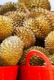 durians arkivfoto