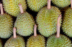 Durians Fotografia Stock