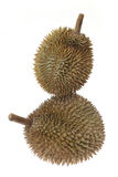 Durians Στοκ Εικόνες