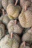 Durians Royaltyfri Foto