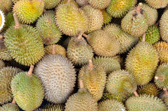Durians Fotografia Royalty Free