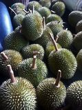 Durians Fotografie Stock