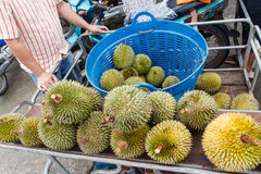 Durians Stockbild