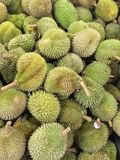Durians Στοκ Εικόνα