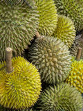 Durians Royaltyfria Foton