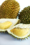 durians Стоковое Фото