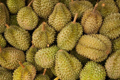 Durians. Alot of Durians from Janthaburi ,Thailand Stock Photos