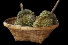 Durians in the basket Royalty Free Stock Photo