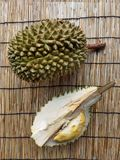 Durians the king of fruit royalty free stock photo