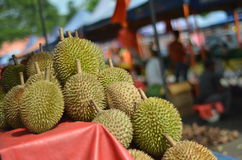 Durians 2 Royalty Free Stock Images