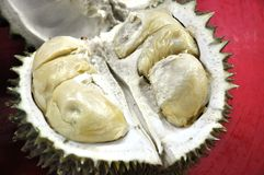 Durians King of Fruits Stock Images
