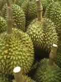 Durians Stock Photos