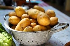 Durkslag som fylls med potatisar Royaltyfria Bilder